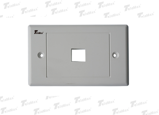 1 Port 120 Type Faceplate