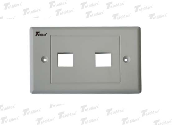 2 Port 120 Type Faceplate