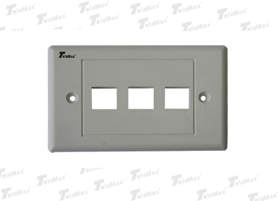 3 Port 120 Type Faceplate